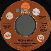 David Bromberg Band - Such A Night