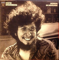 David Bromberg - Demon in Disguise