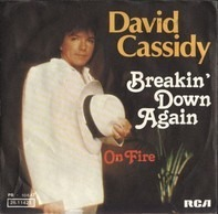 David Cassidy - Breakin' Down Again