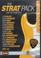 David Gilmour, Albert Lee, Joe Walsh a.o. - The Strat Pack - Live In Concert