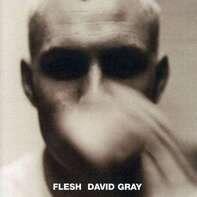 David Gray - Flesh
