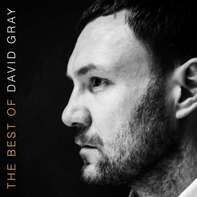 David Gray - The Best Of David Gray (2lp/Gatefold)