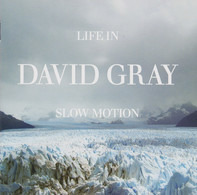 David Gray - Life in Slow Motion