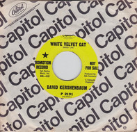David Kershenbaum - White Velvet Cat