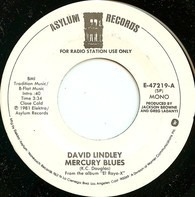 David Lindley - Mercury Blues