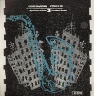 David Sanborn - I Told U So
