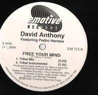 David Anthony Feat. Pedro Herrera - Free Your Mind