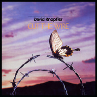 David Knopfler - Cut the Wire