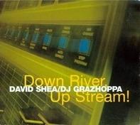 David Shea / DJ Grazzhoppa - Down River, Up Stream!
