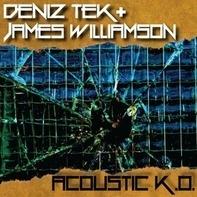 Deniz  Tek & James Williamson - Acoustic K.O.
