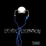 Digital Excitation - Lifetime Warranty