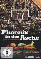 DOKUMENTATION - Phoenix in der Asche