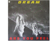 Dream - Are You Feel
