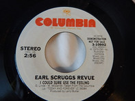 Earl Scruggs Revue - I Could Sure Use The Feeling