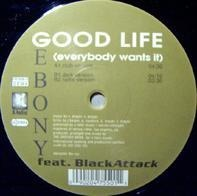 Ebony - Good Life (Everybody Wants It)