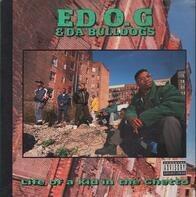 Ed O.G & Da Bulldogs - Life of a Kid in the Ghetto