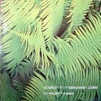 Edgar Froese - Ypsilon in Malaysian Pale