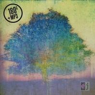 Eric Johnson - EJ (180 Gr.Black Vinyl+mp3)