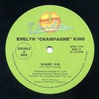 Evelyn King / Nancy Martinez - Shame / Can't Believe (Remix)