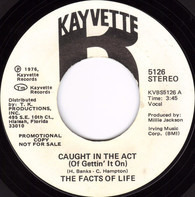 facts of life - Caught In The Act (Of Gettin' It On)
