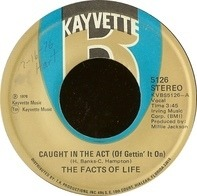 Facts Of Life - Caught In The Act (Of Gettin' It On) / L-O-V-E