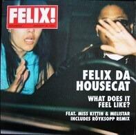 Felix Da Housecat - What Does It Feel Like?