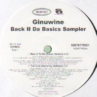 Ginuwine - Back II Da Basics Sampler
