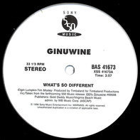 Ginuwine - What's So Different