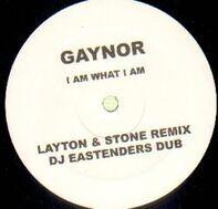 Gloria Gaynor - I Am What I Am