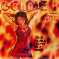 Goldie Featuring Myriam Medlay - This World Today Is A Mess