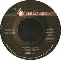 Goodie - Because Of You