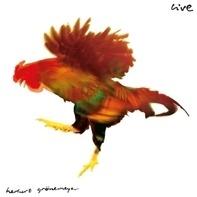 Herbert Grönemeyer - Live