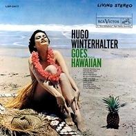 Hugo Winterhalter - Goes....Hawaiian