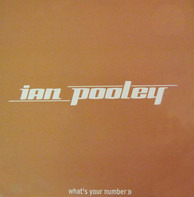 Ian Pooley - What's Your Number