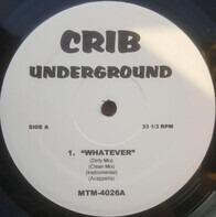 Ideal / Tony Touch & Prodigy / Ice Cube - Whatever / Basics / Waitin' Ta Hate