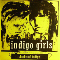 Indigo Girls - Shades Of Indigo