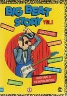Jack Scott / Les Alligators / Robert Gordon a.o. - Big Beat Story Vol. 2