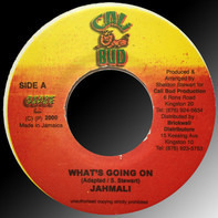 Jahmali - What's Going On