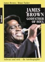James Brown/Bruce Tucker - James Brown Godfather of Soul. Schwarz und stolz. Die autobiographie