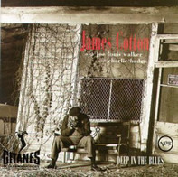 James Cotton With Joe Louis Walker And Charlie Haden - Deep in the Blues