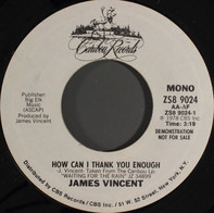 James Vincent - How Can I Thank You Enough