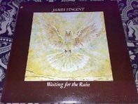 James Vincent - Waiting for the Rain