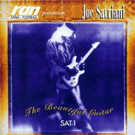 Joe Satriani - The Beautiful Guitar