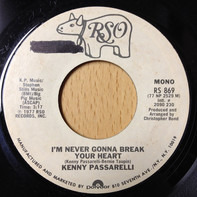 Kenny Passarelli - I'm Never Gonna Break Your Heart