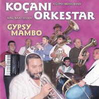 Koçani Orkestar , King Naat Veliov - Gypsy Mambo