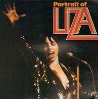 Liza Minnelli - Portrait Of Liza