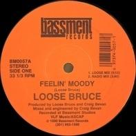 Loose Bruce - Feelin' Moody