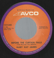 Mary Kay James - Before The Curtain Falls