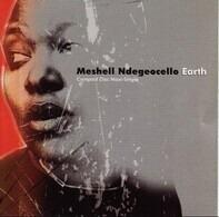 Me'Shell NdegéOcello - Earth