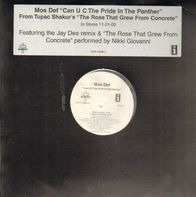Mos Def - Can U C The Pride In The Panther